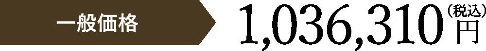 一般価格税別1,036,310円